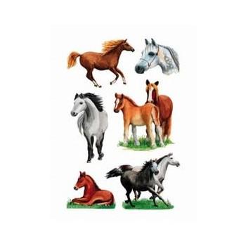 Aufklebe-Bilder Pferde